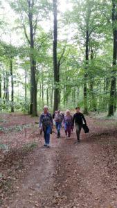 Skön septembervandring från Arild till Himmelstorp och tillbaka